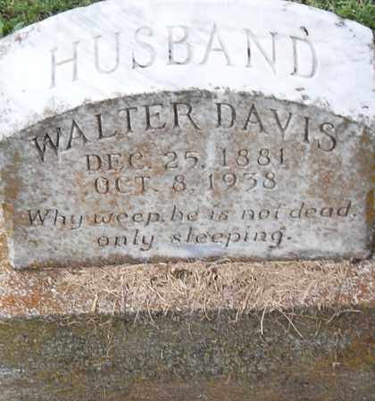 DAVIS, WALTER - Pulaski County, Arkansas | WALTER DAVIS - Arkansas Gravestone Photos