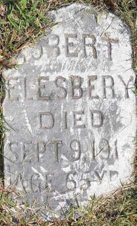 ELESBERY, ROBERT - Pulaski County, Arkansas | ROBERT ELESBERY - Arkansas Gravestone Photos