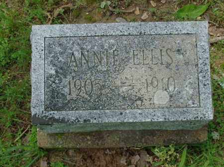 ELLIS, ANNIE - Pulaski County, Arkansas | ANNIE ELLIS - Arkansas Gravestone Photos
