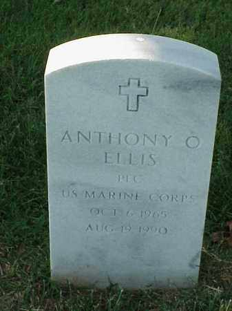 ELLIS (VETERAN), ANTHONY O - Pulaski County, Arkansas | ANTHONY O ELLIS (VETERAN) - Arkansas Gravestone Photos