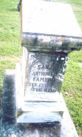 FAMBRO, SARAH ANTIONETTE - Pulaski County, Arkansas | SARAH ANTIONETTE FAMBRO - Arkansas Gravestone Photos