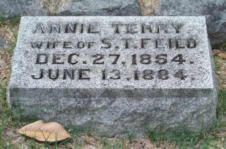 TERRY FEILD, ANNIE - Pulaski County, Arkansas | ANNIE TERRY FEILD - Arkansas Gravestone Photos