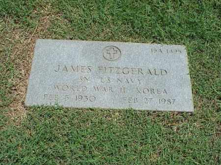 FITZGERALD (VETERAN 2 WARS), JAMES - Pulaski County, Arkansas | JAMES FITZGERALD (VETERAN 2 WARS) - Arkansas Gravestone Photos