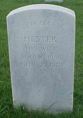 FLEMINGS, HESTER - Pulaski County, Arkansas | HESTER FLEMINGS - Arkansas Gravestone Photos