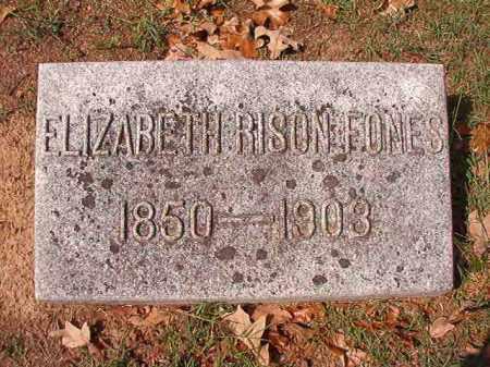 RISON FONES, ELIZABETH - Pulaski County, Arkansas | ELIZABETH RISON FONES - Arkansas Gravestone Photos