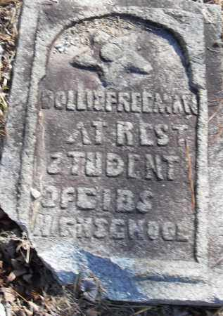 FREEMAN, DOLLIE - Pulaski County, Arkansas | DOLLIE FREEMAN - Arkansas Gravestone Photos