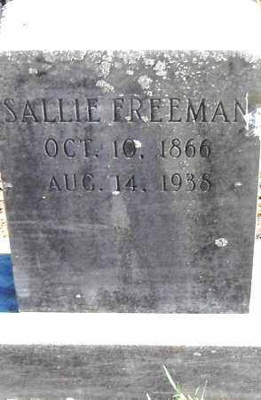 FREEMAN, SALLIE - Pulaski County, Arkansas | SALLIE FREEMAN - Arkansas Gravestone Photos