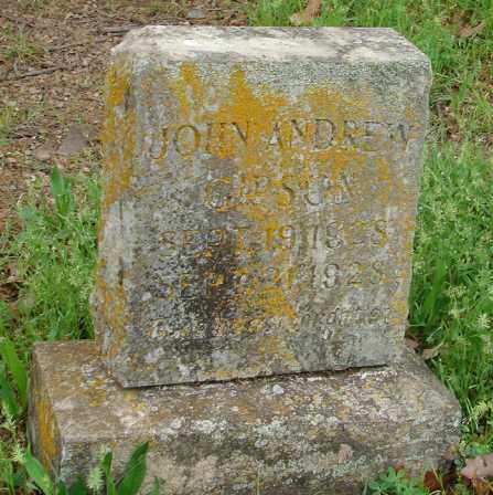 GIPSON, JOHN ANDREW - Pulaski County, Arkansas | JOHN ANDREW GIPSON - Arkansas Gravestone Photos