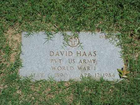 HAAS (VETERAN WWI), DAVID - Pulaski County, Arkansas | DAVID HAAS (VETERAN WWI) - Arkansas Gravestone Photos