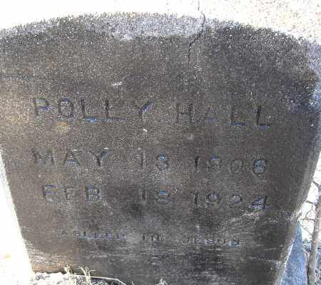 HALL, POLLY - Pulaski County, Arkansas | POLLY HALL - Arkansas Gravestone Photos