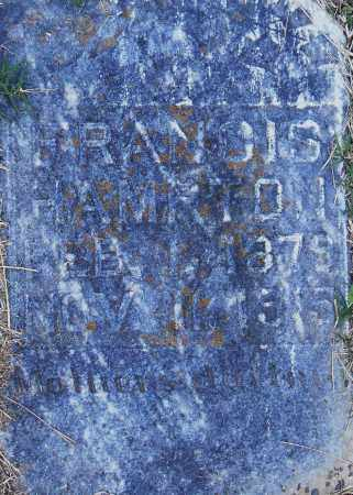 HAMPTON, FRANCIS - Pulaski County, Arkansas | FRANCIS HAMPTON - Arkansas Gravestone Photos