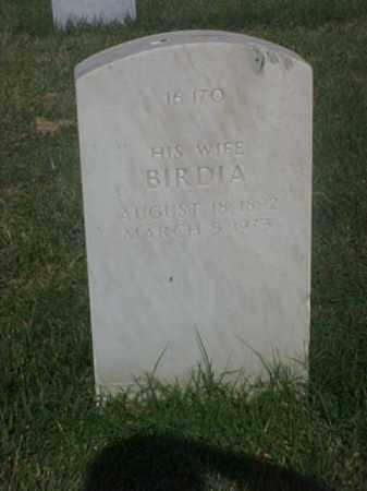 HENDERSON, BIRDIA - Pulaski County, Arkansas | BIRDIA HENDERSON - Arkansas Gravestone Photos