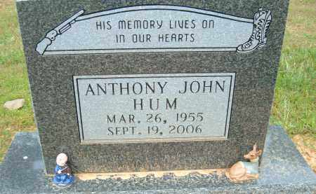 HUM, ANTHONY JOHN - Pulaski County, Arkansas | ANTHONY JOHN HUM - Arkansas Gravestone Photos