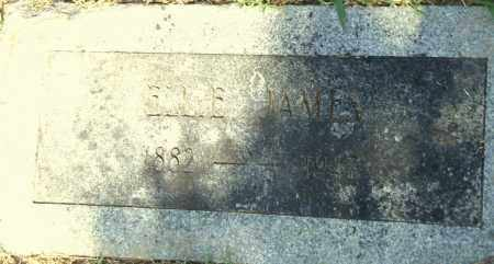 JAMES, ELLIE - Pulaski County, Arkansas | ELLIE JAMES - Arkansas Gravestone Photos