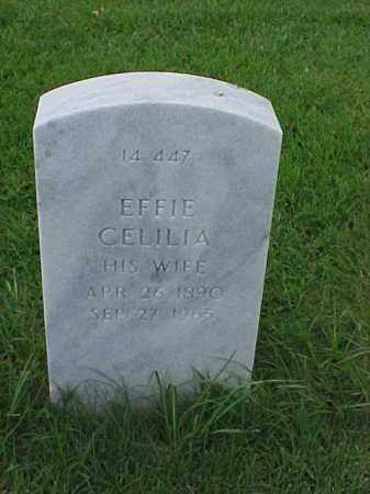 JENKINS, EFFIE CELILIA - Pulaski County, Arkansas | EFFIE CELILIA JENKINS - Arkansas Gravestone Photos