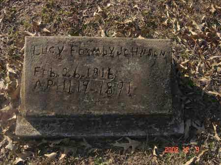 JOHNSON, LUCY - Pulaski County, Arkansas | LUCY JOHNSON - Arkansas Gravestone Photos