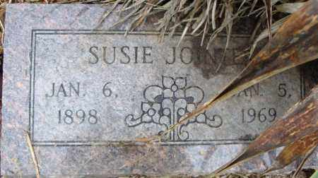 JOINTER, SUSIE - Pulaski County, Arkansas | SUSIE JOINTER - Arkansas Gravestone Photos