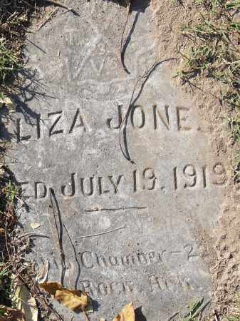 JONES, LIZA - Pulaski County, Arkansas | LIZA JONES - Arkansas Gravestone Photos