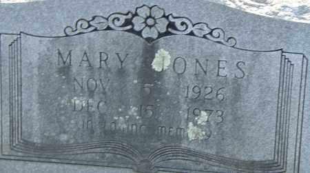 JONES, MARY - Pulaski County, Arkansas | MARY JONES - Arkansas Gravestone Photos