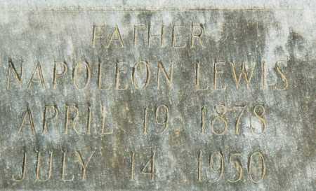 LEWIS, NAPOLEON - Pulaski County, Arkansas | NAPOLEON LEWIS - Arkansas Gravestone Photos