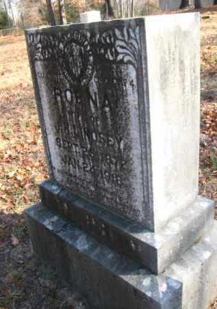 LINDSEY, ROENA - Pulaski County, Arkansas | ROENA LINDSEY - Arkansas Gravestone Photos