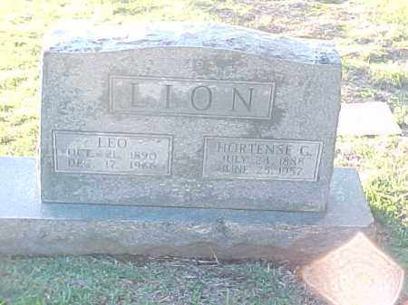 LION, LEO - Pulaski County, Arkansas | LEO LION - Arkansas Gravestone Photos