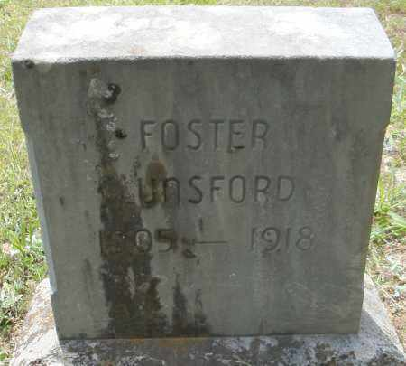 LUNSFORD, FOSTER - Pulaski County, Arkansas | FOSTER LUNSFORD - Arkansas Gravestone Photos