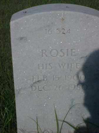 MANUEL, ROSIE - Pulaski County, Arkansas | ROSIE MANUEL - Arkansas Gravestone Photos