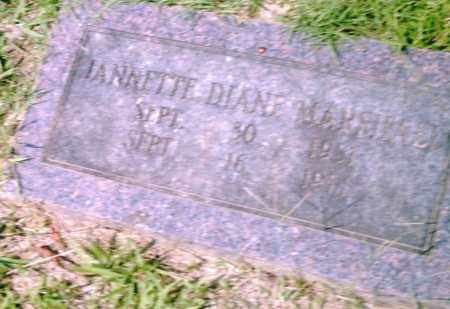MARSHALL, JEANETTE  DIANE - Pulaski County, Arkansas | JEANETTE  DIANE MARSHALL - Arkansas Gravestone Photos