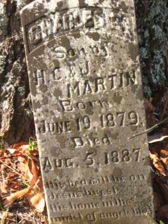 MARTIN, CHARLES E. - Pulaski County, Arkansas | CHARLES E. MARTIN - Arkansas Gravestone Photos