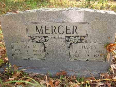 MERCER, CHARLIE - Pulaski County, Arkansas | CHARLIE MERCER - Arkansas Gravestone Photos