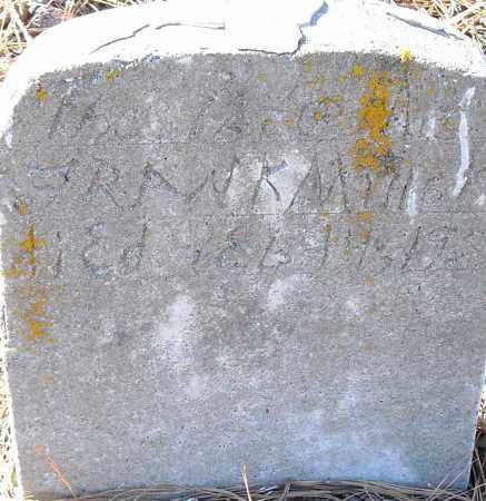 MILLER, FRANK - Pulaski County, Arkansas | FRANK MILLER - Arkansas Gravestone Photos