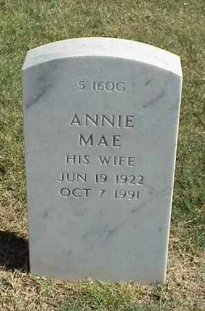 MITCHELL, ANNIE MAE - Pulaski County, Arkansas | ANNIE MAE MITCHELL - Arkansas Gravestone Photos