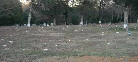 *MOUNT VALLEY CEMETERY,  - Pulaski County, Arkansas |  *MOUNT VALLEY CEMETERY - Arkansas Gravestone Photos