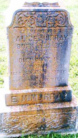 MURRAY, ALICE - Pulaski County, Arkansas | ALICE MURRAY - Arkansas Gravestone Photos