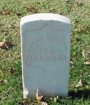NELLUM (VETERAN UNION), ABRAM - Pulaski County, Arkansas | ABRAM NELLUM (VETERAN UNION) - Arkansas Gravestone Photos
