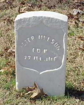 NELSON (VETERAN UNION), PETER - Pulaski County, Arkansas | PETER NELSON (VETERAN UNION) - Arkansas Gravestone Photos