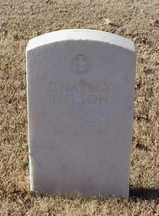 NELSON (VETERAN WWI), CHARLEY - Pulaski County, Arkansas | CHARLEY NELSON (VETERAN WWI) - Arkansas Gravestone Photos