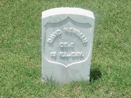 NEWMAN (VETERAN UNION), DAVID - Pulaski County, Arkansas | DAVID NEWMAN (VETERAN UNION) - Arkansas Gravestone Photos