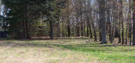 *BETHANY OVERVIEW,  - Pulaski County, Arkansas |  *BETHANY OVERVIEW - Arkansas Gravestone Photos