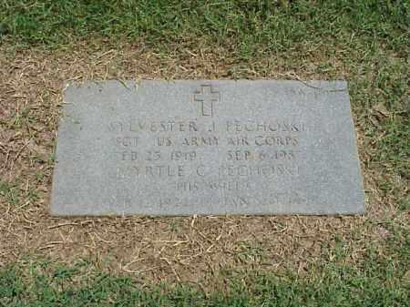 PECHOSKI (VETERAN WWII), SYLVESTER - Pulaski County, Arkansas | SYLVESTER PECHOSKI (VETERAN WWII) - Arkansas Gravestone Photos