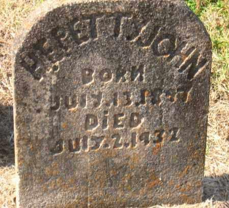PETTYJOHN, H.E. - Pulaski County, Arkansas | H.E. PETTYJOHN - Arkansas Gravestone Photos