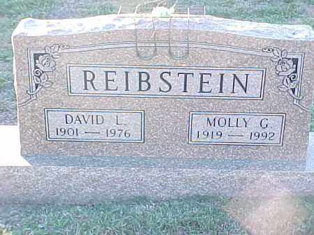 REIBSTEIN, DAVID L - Pulaski County, Arkansas | DAVID L REIBSTEIN - Arkansas Gravestone Photos