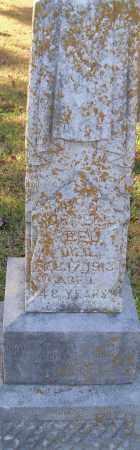 REID, CORNELIA - Pulaski County, Arkansas | CORNELIA REID - Arkansas Gravestone Photos