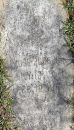 ROBINSON, MOSE - Pulaski County, Arkansas | MOSE ROBINSON - Arkansas Gravestone Photos