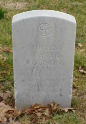 ROBISON  (VETERAN WWI), JULIUS CEASAR - Pulaski County, Arkansas | JULIUS CEASAR ROBISON  (VETERAN WWI) - Arkansas Gravestone Photos