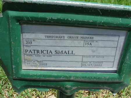 SMALL, PATRICIA - Pulaski County, Arkansas | PATRICIA SMALL - Arkansas Gravestone Photos