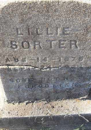 SORTER, LILLIE - Pulaski County, Arkansas | LILLIE SORTER - Arkansas Gravestone Photos