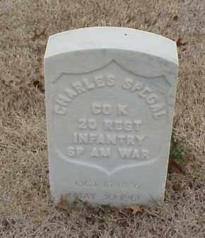 SPEGAL (VETERAN SAW), CHARLES - Pulaski County, Arkansas | CHARLES SPEGAL (VETERAN SAW) - Arkansas Gravestone Photos