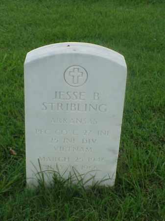 STRIBLING (VETERAN VIET), JESSE B - Pulaski County, Arkansas | JESSE B STRIBLING (VETERAN VIET) - Arkansas Gravestone Photos